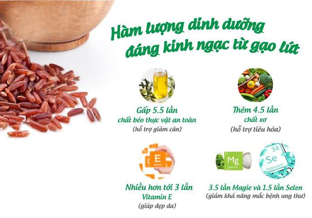 công dụng của ngũ cốc gạo lứt